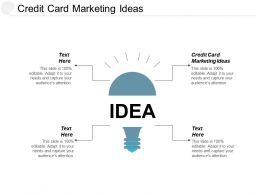 Credit Card Marketing Ideas Ppt Powerpoint Presentation Portfolio Backgrounds Cpb
