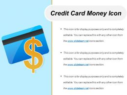 Credit Card Money Icon Ppt Examples Slides