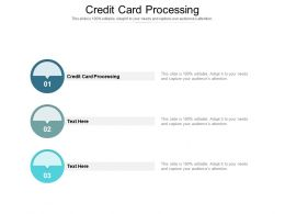 Credit Card Processing Ppt Powerpoint Presentation Styles Slides Cpb