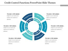 Credit Control Functions Powerpoint Slide Themes