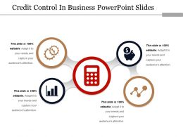 Credit Control In Business Powerpoint Slides