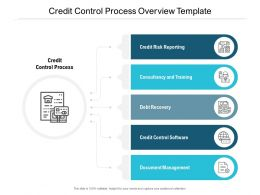 Credit Control Process Overview Template