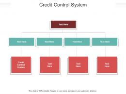 Credit Control System Ppt Powerpoint Presentation Infographics Information Cpb