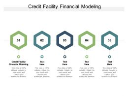 Credit Facility Financial Modeling Ppt Powerpoint Presentation Show Guide Cpb