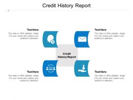 Credit History Report Ppt Powerpoint Presentation Infographic Template Graphics Template Cpb