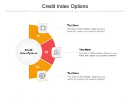 Credit Index Options Ppt Powerpoint Presentation Portfolio Infographic Template Cpb