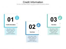 Credit Information Ppt Powerpoint Presentation Styles Clipart Images Cpb