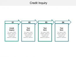 Credit Inquiry Ppt Powerpoint Presentation Gallery Visuals Cpb
