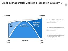 Credit Management Marketing Research Strategy Job Techniques Performance Management Cpb