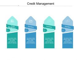 Credit Management Ppt Powerpoint Presentation File Guidelines Cpb