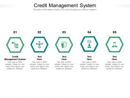 Credit Management System Ppt Powerpoint Presentation Infographic Template Cpb