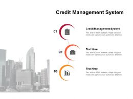 Credit Management System Ppt Powerpoint Presentation Visual Aids Diagrams Cpb