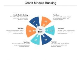 Credit Models Banking Ppt Powerpoint Presentation Portfolio Graphics Pictures Cpb