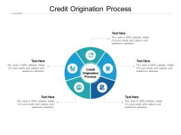 Credit Origination Process Ppt Powerpoint Presentation Show Example Introduction Cpb