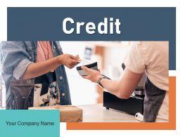 Credit Payment Dollar Transaction Customer Smartphone Representing