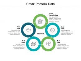 Credit Portfolio Data Ppt Powerpoint Presentation Gallery Inspiration Cpb