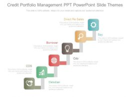 Credit Portfolio Management Ppt Powerpoint Slide Themes