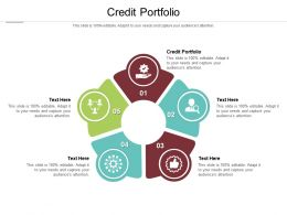 Credit Portfolio Ppt Powerpoint Presentation Gallery Format Cpb