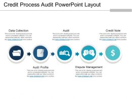 Credit Process Audit Powerpoint Layout