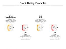 Credit Rating Examples Ppt Powerpoint Presentation Layouts Information Cpb