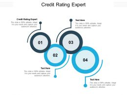 Credit Rating Expert Ppt Powerpoint Presentation Summary Background Images Cpb