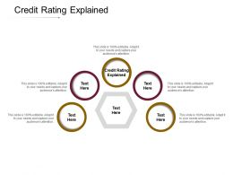 Credit Rating Explained Ppt Powerpoint Presentation Gallery Graphics Cpb