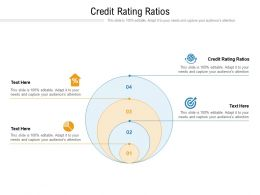 Credit Rating Ratios Ppt Powerpoint Presentation File Structure Cpb