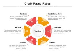 Credit Rating Ratios Ppt Powerpoint Presentation Gallery Example File Cpb