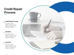 Credit Repair Process Ppt Powerpoint Presentation Slides Example Cpb