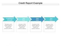 Credit Report Example Ppt Powerpoint Presentation Infographic Template Model Cpb
