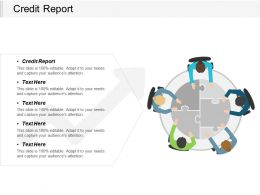 Credit Report Ppt Powerpoint Presentation Gallery Samples Cpb