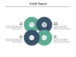 Credit Report Ppt Powerpoint Presentation Layouts Slides Cpb