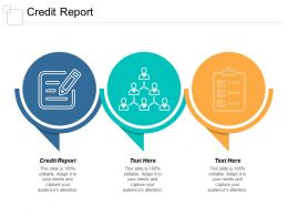 credit_report_ppt_powerpoint_presentation_outline_layouts_cpb_Slide01