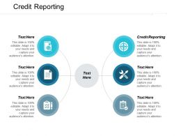 Credit Reporting Ppt Powerpoint Presentation Gallery Background Cpb