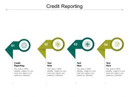 Credit Reporting Ppt Powerpoint Presentation Icon Ideas Cpb