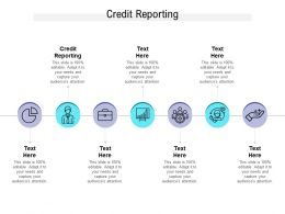 Credit Reporting Ppt Powerpoint Presentation Professional Brochure Cpb