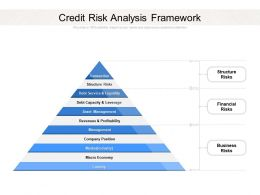Credit Risk Analysis Framework