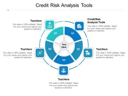 Credit Risk Analysis Tools Ppt Powerpoint Presentation Portfolio Elements Cpb