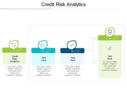 Credit Risk Analytics Ppt Powerpoint Presentation Portfolio Show Cpb