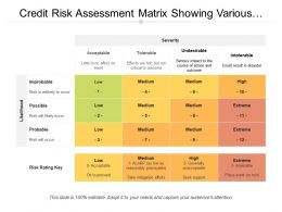 Credit Risk Assessment Matrix Showing Various Risks