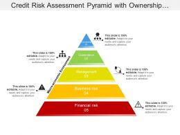 Credit Risk Assessment Pyramid With Ownership And Governance