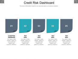 Credit Risk Dashboard Ppt Powerpoint Presentation Summary Portrait Cpb