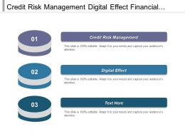 Credit Risk Management Digital Effect Financial Risk Management Cpb