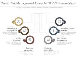 Credit Risk Management Example Of Ppt Presentation