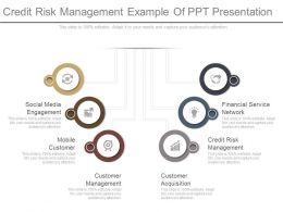 Credit Risk Management Example Of Ppt Presentation