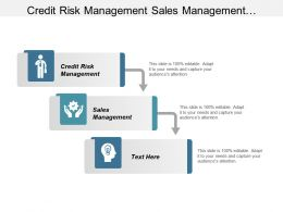 Credit Risk Management Sales Management Business Process Automation Cpb