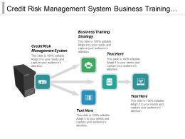 Credit Risk Management System Business Training Strategy Risk Models Cpb