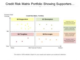Credit Risk Matrix Portfolio Showing Supporters And Exemplars