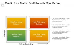 Credit Risk Matrix Portfolio With Risk Score