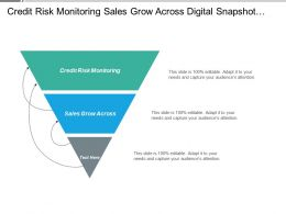 Credit Risk Monitoring Sales Grow Across Digital Snapshot Advertising Trends Cpb